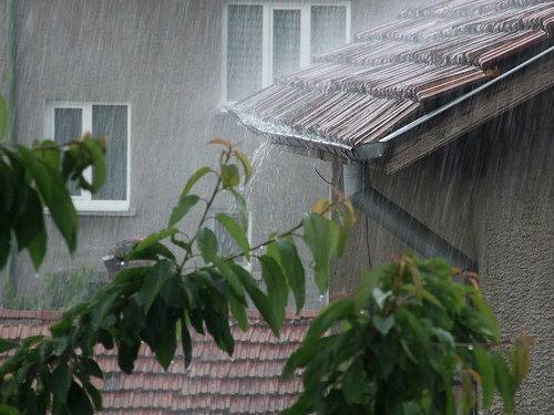 สรุปการดูแลบ้านอย่างครบวงจร การดูแลบ้านในแต่ละฤดูกาลไม่ว่าร้อน ฝน หรือหนาวจะทำให้บ้านมีความคงทน และสวยงามตลอดไป การดูแลบ้านให้สวยเสมอ 60min