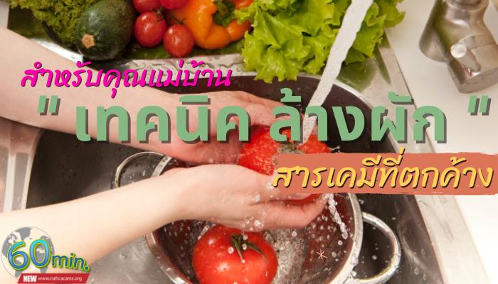 เทคนิคการล้างผักช่วยล้างสิ่งตกค้าง เพื่อสุขภาพที่ดีของทุกคน