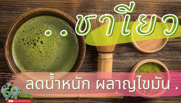 ชาเขียว ดื่มอย่างไรเพื่อลดน้ำหนัก ให้ได้ผล
